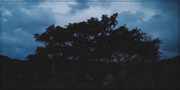 乳井真介,レッスン体験談,レッスン体験,リラヨガ,ヨガレッスン,ヨガ,ヨーガ,口コミ,評判,場所,学芸大学,学芸大学駅,どこ,リラヨガインスティテュート